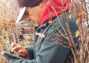 Canadian software specialist Groware solves wholesale nursery challenges with Evoke apps