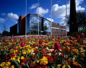 Northern Ireland Council Digitally Transforms Financial Systems with SaaS