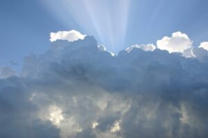 Cognizant Expands Commitment to Delivering Cloud Modernization with Business Group Dedicated to Google Cloud
